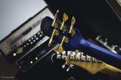 At Night I Fly - LP recording 01 (gergely.t.springer) Tags: budapest hungary magyarország rehearsal lprecording band anif atnightifly spector bass guitar mesa dualrectifier petruccimodel washburn bluelove