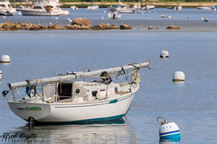 IMG_7563 (alfredo.rossitto) Tags: boat boats water sail sailboat capecod landscape
