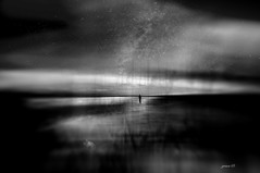#Under The Milky Way (graceindirain) Tags: fox volpe journey milky way underthemilkyway illustrations blur blackandwhite blancoynegro biancoenero monochrome digitalpainting nikon graceindirain
