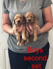 Darby Boys second set 8-17
