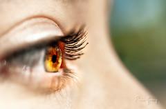 Eyes 2 (Enio Godoy - www.picturecumlux.com.br) Tags: niksoftware nikond300s nikon d300s viveza2 clouseup macro vitóriarégia details baurusp eye ayslla naturelight ensaio