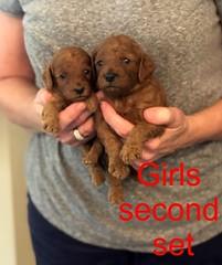 Mazie Girls second set pic 4 8-17