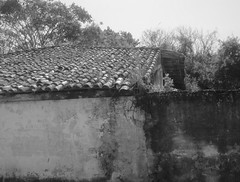 Very old house and hand made tiles. (vieira.de.carvalho) Tags: roof tiles bw decay house historicalsite digitalbw leica m8 summaron35mm