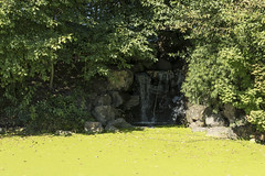 P1130317 (David J. Thomas) Tags: albany oregon talkingwatergardens waterreclamation watertreatment artificialwetland travel vacation family