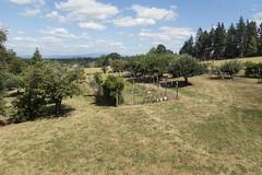 RED06518 (David J. Thomas) Tags: albany oregon farm family vacation travel