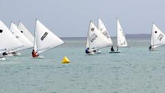 Aruba_International_Regatta_2019_039 (eric15) Tags: aruba international regatta sail sailing oranjestad surfside marina dutch marines sunfish beach cat cats optimist qube f11