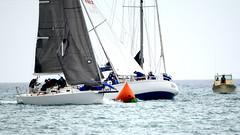 Aruba_International_Regatta_2019_036 (eric15) Tags: aruba international regatta sail sailing oranjestad surfside marina dutch marines sunfish beach cat cats optimist qube f11
