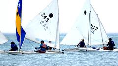 Aruba_International_Regatta_2019_030 (eric15) Tags: aruba international regatta sail sailing oranjestad surfside marina dutch marines sunfish beach cat cats optimist qube f11