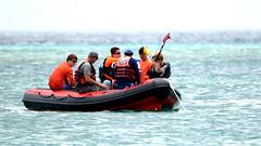 Aruba_International_Regatta_2019_016 (eric15) Tags: aruba international regatta sail sailing oranjestad surfside marina dutch marines sunfish beach cat cats optimist qube f11