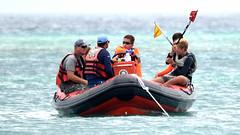 Aruba_International_Regatta_2019_015 (eric15) Tags: aruba international regatta sail sailing oranjestad surfside marina dutch marines sunfish beach cat cats optimist qube f11
