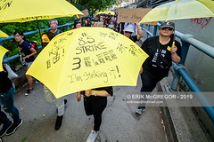 EM-190817-FreeHongKongRallyNYC-050 (Minister Erik McGregor) Tags: activism boycottmulan carrielam china chinatown chinese community counterprotest directaction erikmcgregor freehongkong hongkong ny4hk nyc newyork photography powertothepeople protest usa democracy demonstration detention extradition freedom law march news people photojournalism placard political politics prison protesters rally repression signs streetphotography 9172258963 erikrivashotmailcom ©erikmcgregor
