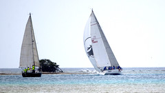 Aruba_International_Regatta_2019_041 (eric15) Tags: aruba international regatta sail sailing oranjestad surfside marina dutch marines sunfish beach cat cats optimist qube f11