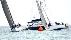 Aruba_International_Regatta_2019_035 (eric15) Tags: aruba international regatta sail sailing oranjestad surfside marina dutch marines sunfish beach cat cats optimist qube f11
