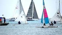 Aruba_International_Regatta_2019_025 (eric15) Tags: aruba international regatta sail sailing oranjestad surfside marina dutch marines sunfish beach cat cats optimist qube f11