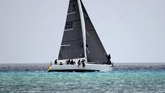 Aruba_International_Regatta_2019_010 (eric15) Tags: aruba international regatta sail sailing oranjestad surfside marina dutch marines sunfish beach cat cats optimist qube f11