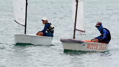 Aruba_International_Regatta_2019_008 (eric15) Tags: aruba international regatta sail sailing oranjestad surfside marina dutch marines sunfish beach cat cats optimist qube f11