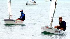 Aruba_International_Regatta_2019_007 (eric15) Tags: aruba international regatta sail sailing oranjestad surfside marina dutch marines sunfish beach cat cats optimist qube f11