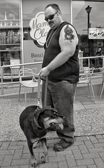the uncooperative Rotweiller (Bluescruiser1949) Tags: dog biker tattooed arm ottawa street blackandwhite blackwhite bw d300 nikond300 canada streetphotography