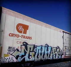 (timetomakethepasta) Tags: gouls wh a2m sws d30 wyse freight train graffiti art cryo cryotrans cryx reefer