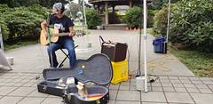 Music in the Park (Bill 3 Million views) Tags: music park guitar vocals singing veteransmemorialpark camerashy