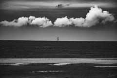 Petit Homme et l'immensité. (LACPIXEL) Tags: petithomme immensité littleman pequeñohombre vastness hugeness inmensidad nuage cloud nube ciel sky cielo beach plage playa sable arena sand nikon nikonfr nikonfrance normandie flickr lacpixel