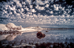 The Tower in InfraRed (RonnieLMills 7 Million Views. Thank You All :)) Tags: hss sliderssunday infrared nikon scrabo tower islandhill strangford lough clouds water reflections fluffy heart shaped rock comber newtownards county down northern ireland