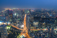 Orange starfish (sapphire_rouge) Tags: tokyo tokyotower observation 東京タワー 展号室 メインデッキ maindeck 首都高 metropolitanexpressway
