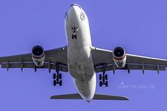 VH-XFD A332 VIRGIN AUSTRALIA YBBN (Sierra Delta Aviation) Tags: virgin australia airbus a332 brisbane airport ybbn vhxfd