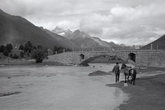 1452 (The Dent.) Tags: fujigwproii kodak tmax tmaxdev 14 6mins china tibet kham mediumformat filmphotography