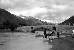 1449 (The Dent.) Tags: fujigwproii kodak tmax tmaxdev 14 6mins china tibet kham mediumformat filmphotography