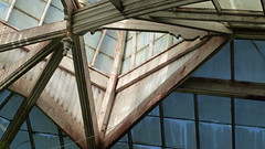 A17997 / abstraction at the conservatory (janeland) Tags: sanfrancisco california 94118 goldengatepark conservatoryofflowers abstract architecture architecturaldetail sooc teal overhead june 2018 greenhouse