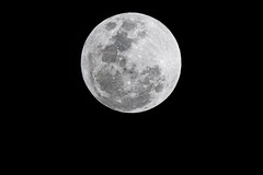 Full Moon (Merrillie) Tags: moonphases nightsky moonlight astrophotography galaxy night fullmoon moon nighttime astronomy moonsurface lunar