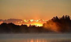 Midsommar 2019. (johnerlandaxelsson@gmail.com) Tags: gimo uppland sverige natur landskap johnaxelsson omanipulerad