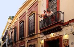 """Casa de la Memoria"" is a distinctive venue for flamenco (B℮n) Tags: sevilla seville spain landmark fountains pavilions film andalusiaandaluciaoliveshistoricbuildingspondswallsbenchesspain'sfamousopensquarefilmedspanje50favestopf501929wellknownaníbal gonzálezarchitecturearchitecturalmasterpiecemonumentdecoratedceramic tilesyounganakinpadmémaría luisa parkunescoheritagesitehorsedrawncarriagetransportcentremoorishhorsepaardenkoetscathedralgiraldatowergothicroyal alcazarsalcázar sevillealcázarpalaceroyalrealesalcázaresdereales alcázares de sevillapatio las doncellas courtyardroyal palacegiraldo towerorangesorangepatio los naranjos sinaasappelbomen flamenco dance tradition cultural centro casadelamemoria centroculturalflamenco traditional theater dancing romance romantic"
