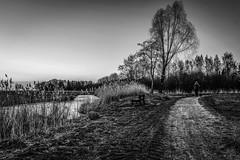 Bremen - Hollerland (matthias-fotografien) Tags: bremen hollerland monochrome