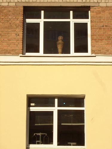 Окна Горного института ©  ayampolsky