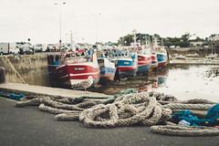 Roscoff - Bretagne (clearfotografie) Tags: bretagne festbrennweite helios44m fujixt2 frankreich europa
