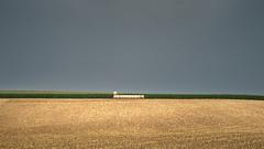 After the Heavy Rain Shower (Bernd Walz) Tags: