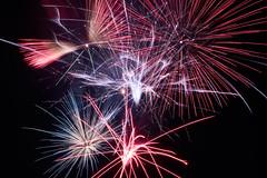 flying around (peaceful-jp-scenery (busy)) Tags: fireworks display summer festival yamagata suigo oe mogamigawariver 水郷大江夏まつり灯ろう流し花火大会 最上川 97回 西村山郡大江町 寒河江 山形 日本 sony α99ⅱ a99m2 ilca99m2 amount sal2470z variosonnart2470mmf28za carlzeiss