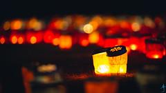 偕樂園-夜梅祭 (迷惘的人生) Tags: 水戶市 茨城縣 日本 canon 5d3 5dⅲ 70200mm 偕樂園