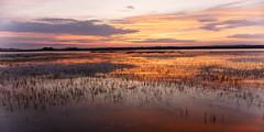 Colourful evening moment / Un moment de la soirée coloré (GEMLAFOTO) Tags: dusk crépuscule soirée evening colours river ottawariver rivièredesoutaouais rivière bay bayofclarencerockland baiedeclarencerockland michelgauthier sonyilce6000