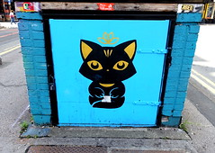 Black cat street art in Manchester (Tony Worrall) Tags: nw northwest north update place location uk england visit area attraction open stream tour country item greatbritain britain english british gb capture buy stock sell sale outside outdoors caught photo shoot shot picture captured ilobsterit instragram gmr manchester manc city street urban streetart paint painted wall show urbanart daub made graffiti mural art artist arty colourful pussy cat blackcat urbanartinmanchester