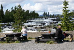 they admire the view (helena.e) Tags: helenae älsa husbil rv motorhome semester vacation vildmarksvägen wildernesroad holiday trappstegsforsarna water vatten vattenfall waterfall hund dog animal djur människor people norrland träd tree