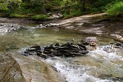 brakkåfallet (helena.e) Tags: helenae älsa husbil rv motorhome semester vacation vildmarksvägen wildernesroad holiday brakkåfallet vattenfall waterfll water vatten