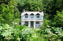 Trehill (ewan.osullivan) Tags: house cornwall cottage trehill calstock
