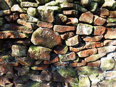 "The wall • <a style=""font-size:0.8em;"" href=""http://www.flickr.com/photos/136447376@N03/48565890227/"" target=""_blank"">View on Flickr</a>"