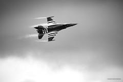 F16 Belge (lesjulieschoses) Tags: avion aviation f16 belge armée arméedelair aircraft frenchaircraftphotographer meeting cazaux gironde nouvelleaquitaine