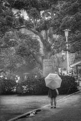 Japan 2019 (Mark_66it) Tags: japan osaka streetphoto street nikon d810