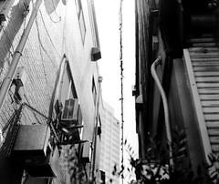IMG_20190814_0003 (Dinasty_Oomae) Tags: graflex グラフレックス nationalgraflex ナショナルグラフレックス 白黒写真 白黒 monochrome blackandwhite blackwhite bw outdoor 東京都 東京 tokyo 中野区 nakano