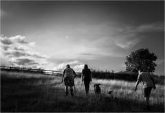 Up the Hill (Fitzpaine) Tags: staplefitzpaine family field blackandwhite shadow people somerset westcountry england uk taunton monochrome mono xt2 fujifilmxt2 davidjdalley samyang samyang12mm wideangle